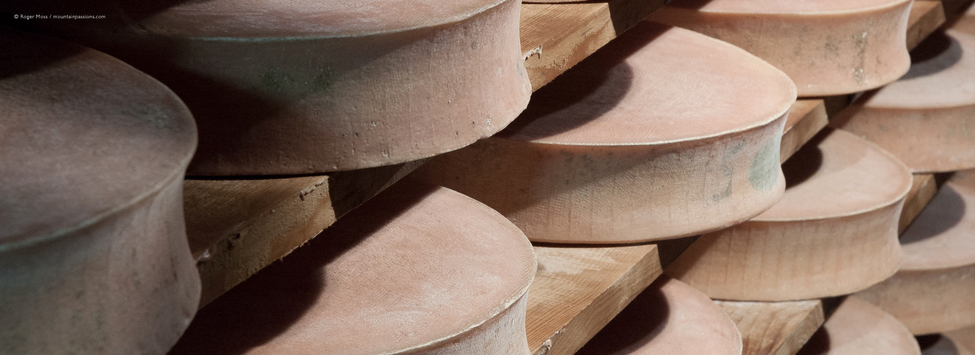 Beaufort cheeses maturing