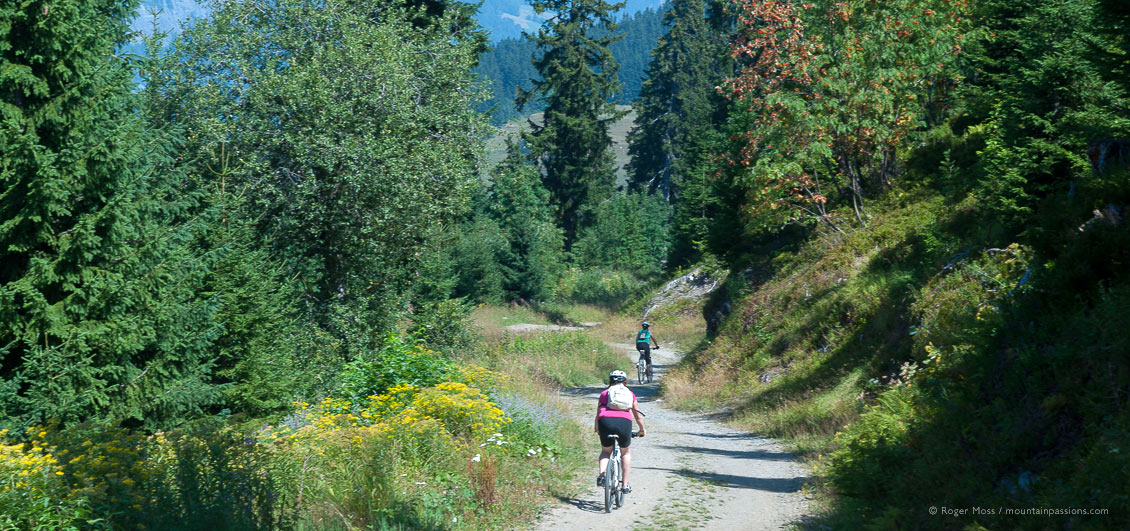Two mountain bikers on forest trail near Les Saisies