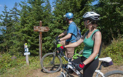 Choosing which cycle trail to follow, Les Saisies