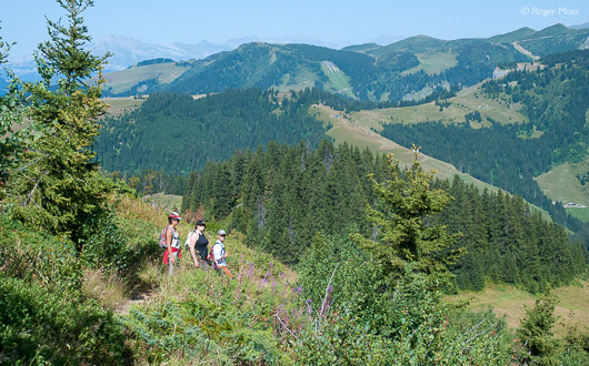 Walking Holidays in Les Saisies