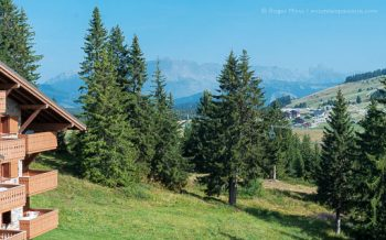 High view of village and mountains through trees from ski apartments in summer