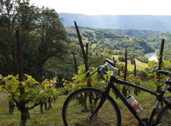 Savoie vineyards - Peak Retreats The Lakes Tour