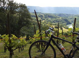 Savoie vineyards - Peak Retreats The Lakes Tour